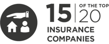 14 of the top 20 insurance companies are InfoGuard customers.