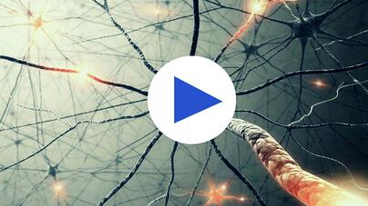 infoguard-sophos-deep-learning-preview